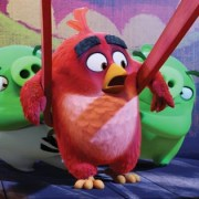 Angry BIrds- Vorschaubild