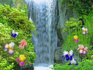 resized_beautiful-waterfall2