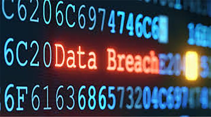 Company Data Theft Investigation