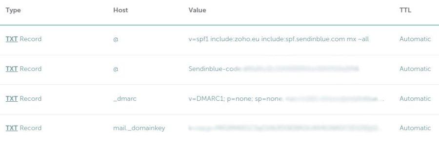 domain DNS records