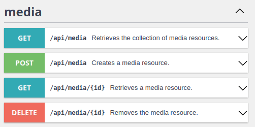 File upload Media entity API platform