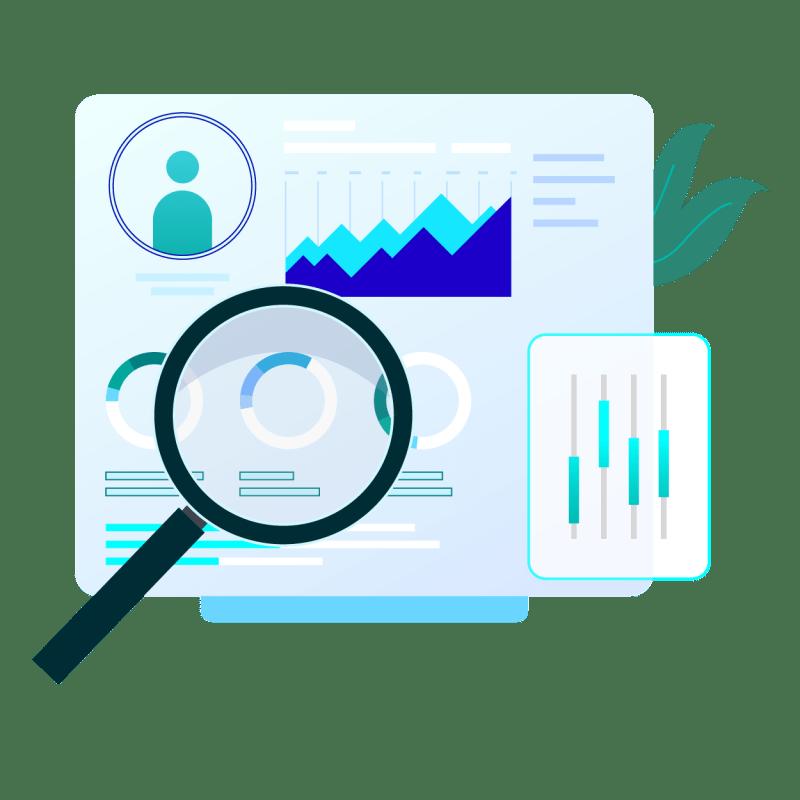 Account Audit
