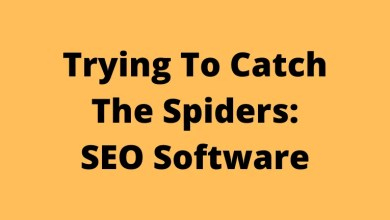 Trying To Catch The Spiders: SEO Software