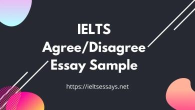 Agree Disagree Essay Sample