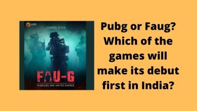 PUBG or Faug
