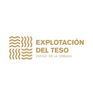 Digitaliza Tu Negocio | digitalizatunegocio.net | Logo Explotación del Teso.