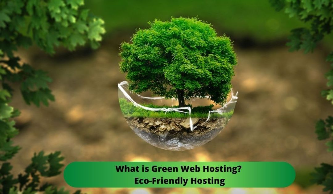 What is Green Web Hosting? Eco-Friendly Hosting Good or Bad for Website