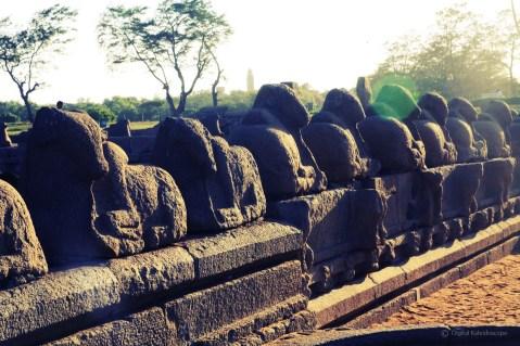 mahabalipuram00001
