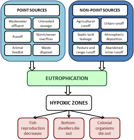 Features and sources of Eutrophication | UPSC - IAS