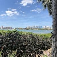 downtown sarasota fl view from marie selby gardens