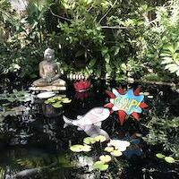pond art at mary selby botanical gardens sarasota fl