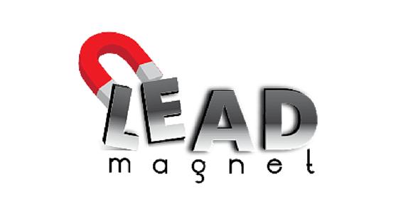 Lead magnet-vibewebsolutions