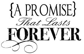 promise Digital Marketing Skill Institute