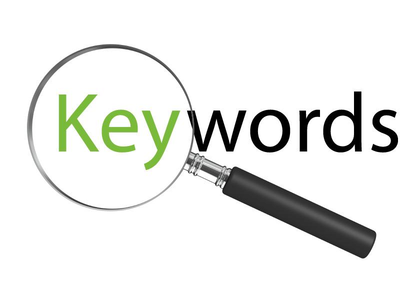 SEO Optimized Keywords-vibewebsolutions
