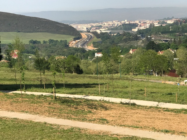 Camino desde el Monte del Gozo (4)