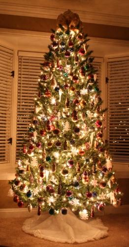 5 Ways To Take Great Christmas Tree Photos Digital