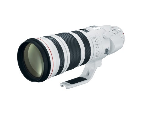 Canon EF 200-400mm f:4 L IS USM Extender 1.4x