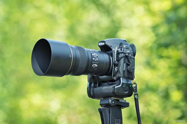 AF-S Nikkor 300mm f4E PF ED VR with Nikon D700