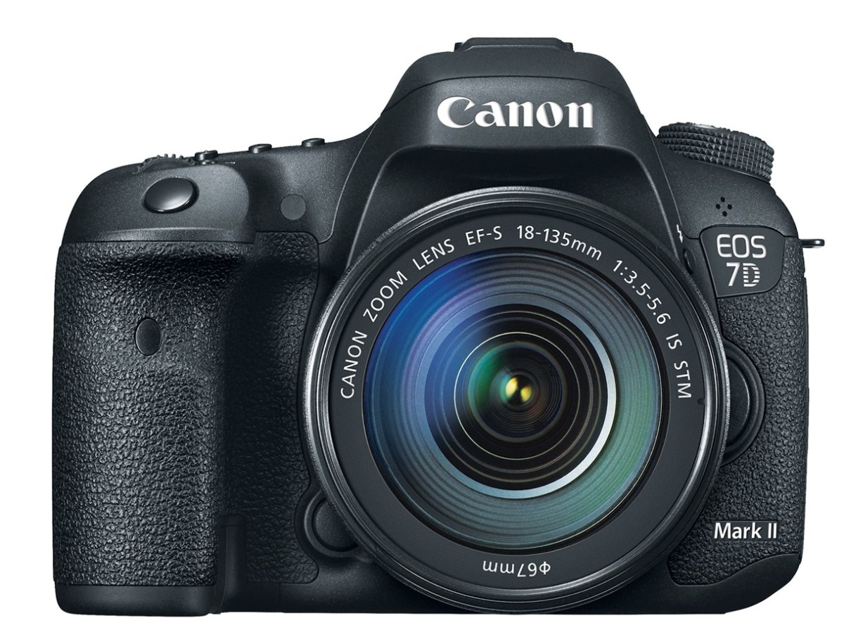 canon eos 7d mark ii with EF 24-105 STM