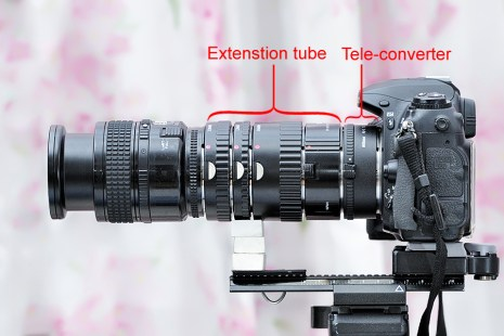 With tele-converter attached