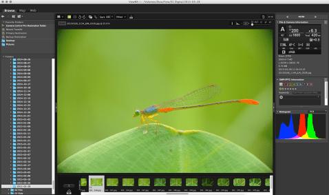 Nikon ViewNX-i Image View