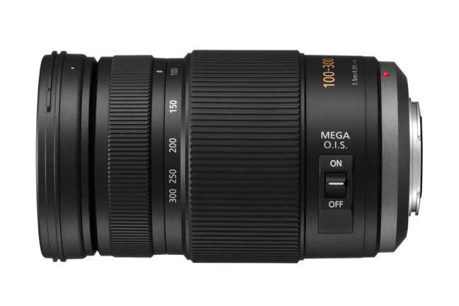 Panasonic Lumix G Vario 100-300mm f:4–5.6 Mega O.I.S. Lens 03