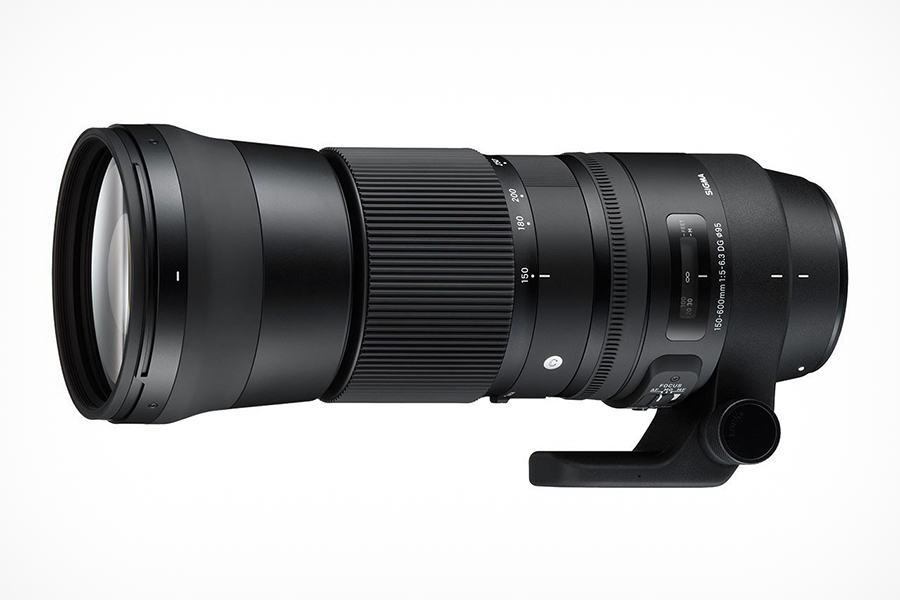 SIGMA 150-600mm F5-6.3 DG OS HSM | Sports – SIGMA and Canon mount SIGMA 150-600mm F5-6.3 DG OS HSM | Contemporary