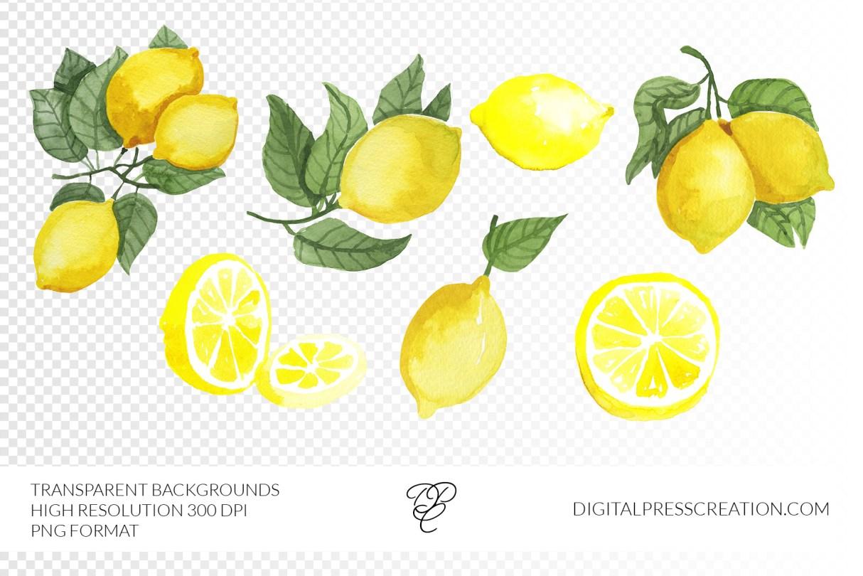 Transparency Lemons Clipart Illustration