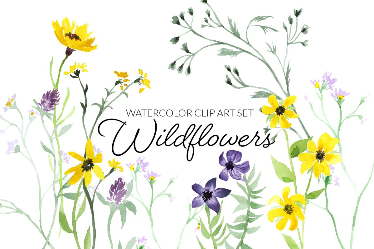 Watercolor wildflowers clipart, digital press creation