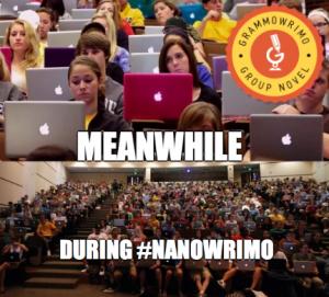 Meanwhile NaNoWriMo
