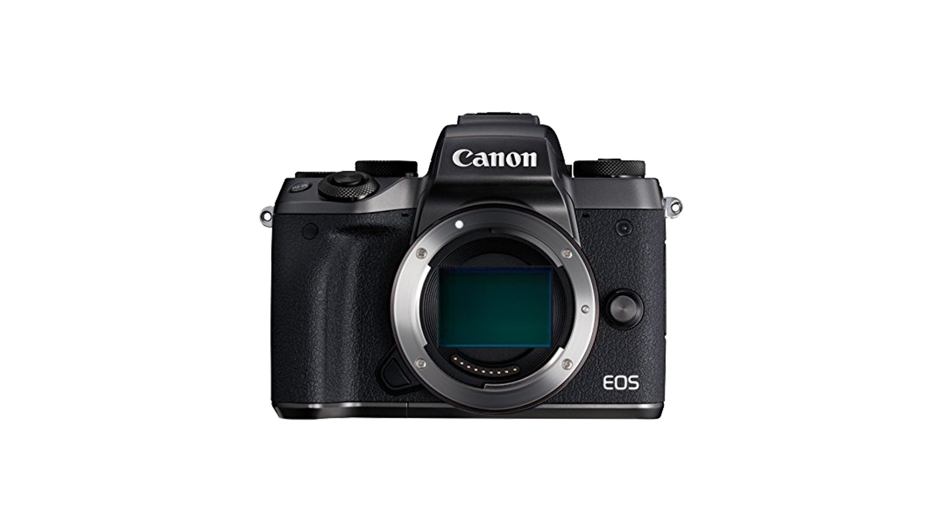 Que sabemos de la Canon sin espejo full frame?