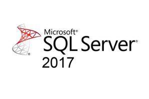SQL Server Database Services
