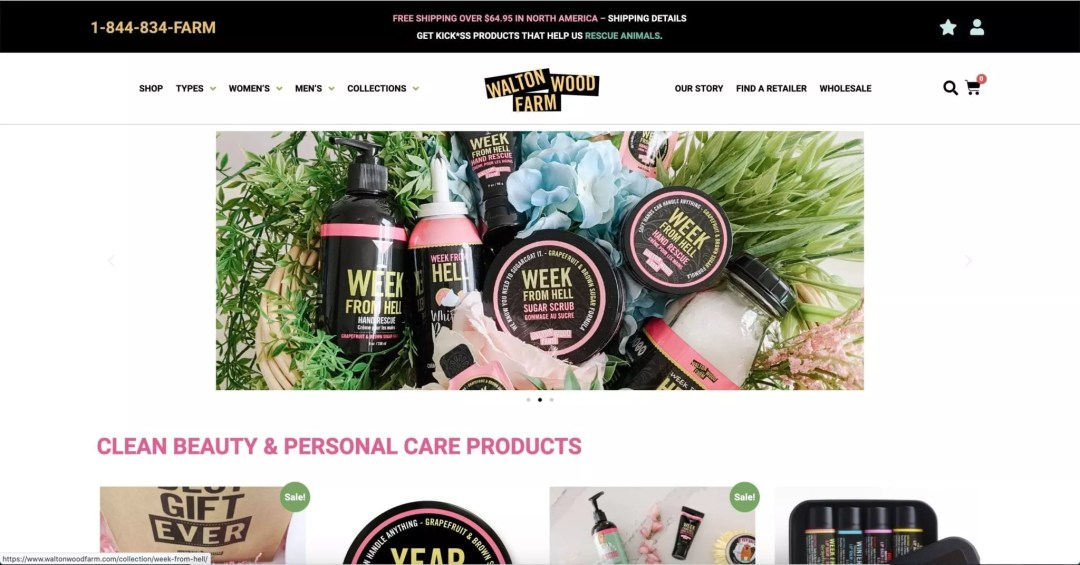 Website Design Project (Shawn L Welch Leadership Coaching)