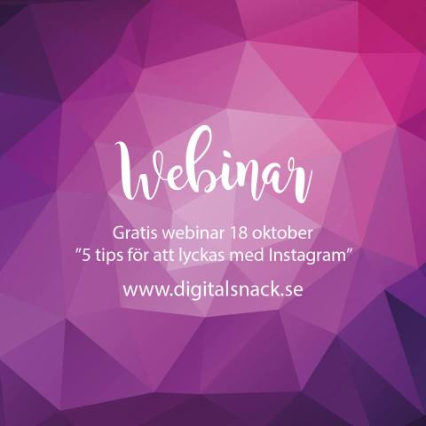 Webinar Digitalsnack Instagram Meltwater