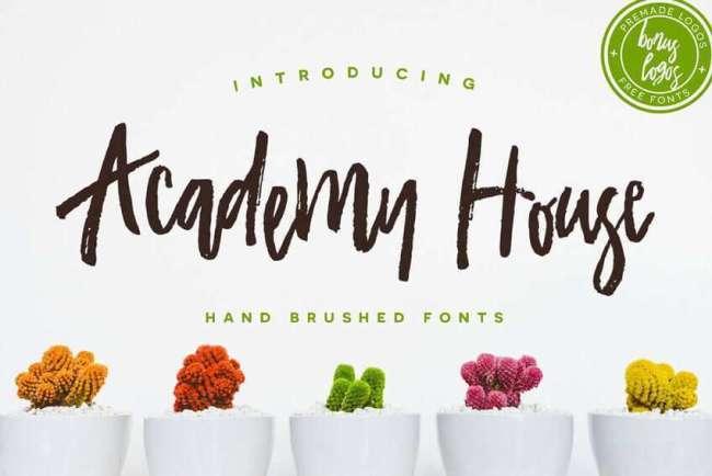 Acaddemy-House-Font-Hand-Brushed