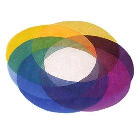 sonya-winner-colour-wheel