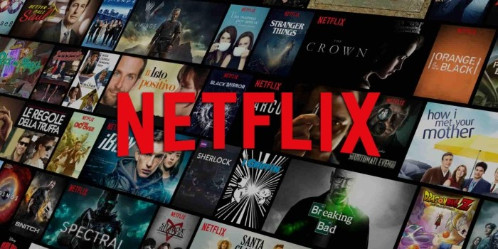 Bahasa Indonesia Subtitles to Delight Netflix Members in Indonesia