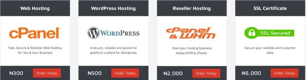 Rythost.com Web Hosting Review: 24/7 Fast and Expert Support