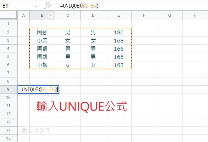 輸入UNIQUE函數跟公式