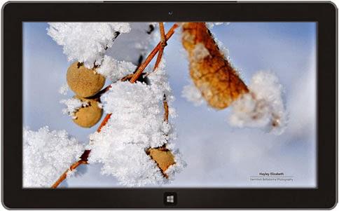 windows themes winter