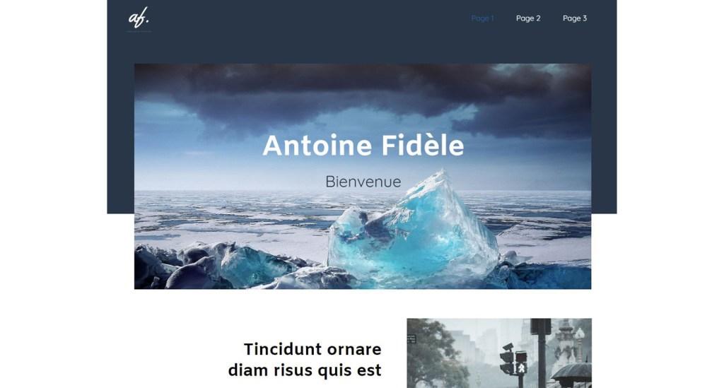 Antoine Fidele profil exemple site SiteW