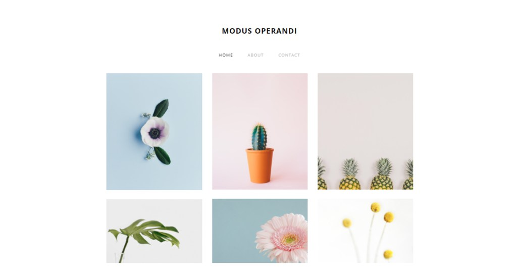 Modus Operandi exemple site Weebly
