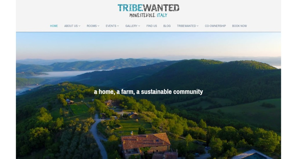 TribeWanted exemple site Strikingly