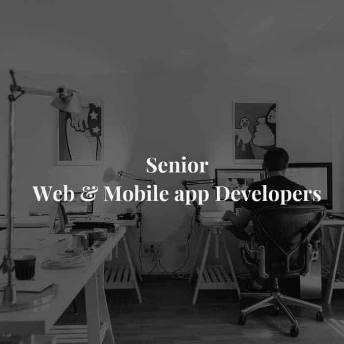 Senior web and app developers