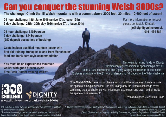 Welsh 3000s flyer