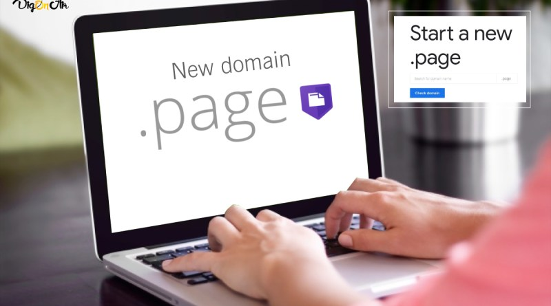 .Page Domain
