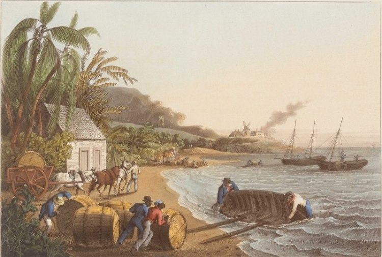 Rebel Slaves and Resistance in the Revolutionary Caribbean. A painting depicting enslaved men rolling barrels of sugar toward boats