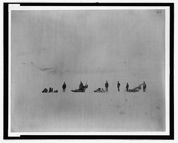 A photograph with showing several men and sled dogs set in a white polar background