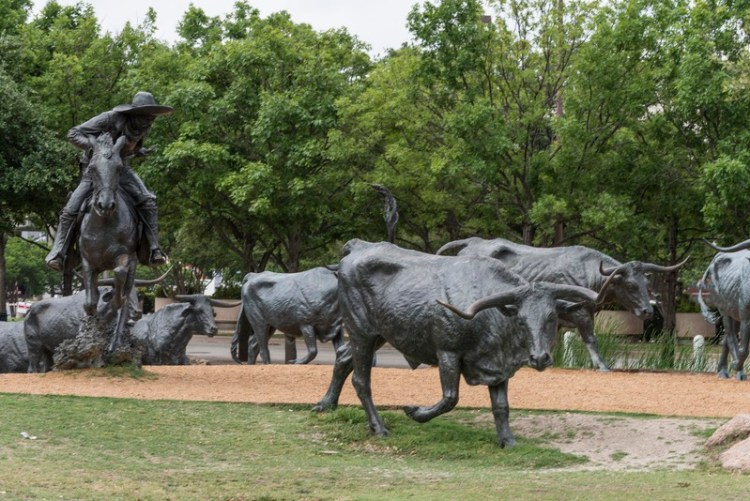 A status of bronze steer being roped by a bronze cowboy in a large public art exhibit