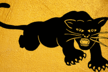 Black Panther Party Logo on Yellow Background